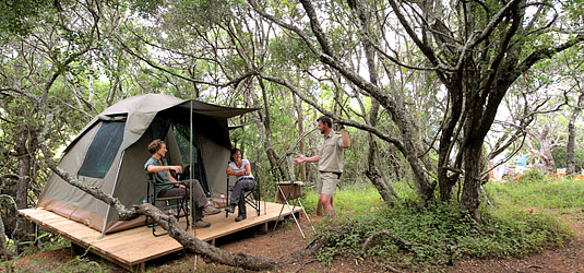 Bush Camp Experience Kariega Game Reserve Greater Addo