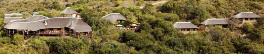 Lentaba Safari Lodge - Lalibela Game Reserve, Eastern Cape