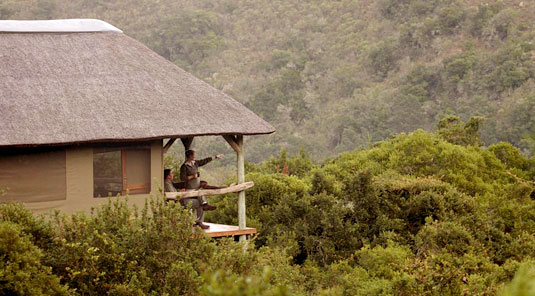 Lalibela Game Reserve, Eastern Cape