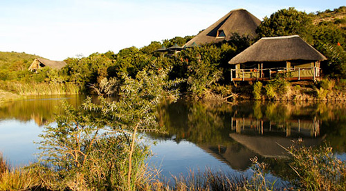 Bayethe Lodge - Shamwari Game Reserve