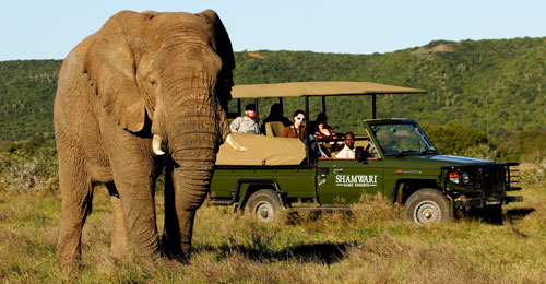 Shamwari Game Reserve, Eastern Cape